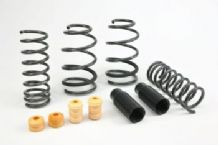 Focus RS MK3 Eibach Pro Kit Lowering Springs